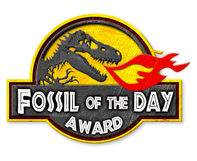 "Shame on Ireland – ""Fossil of the Day"" in Lima"