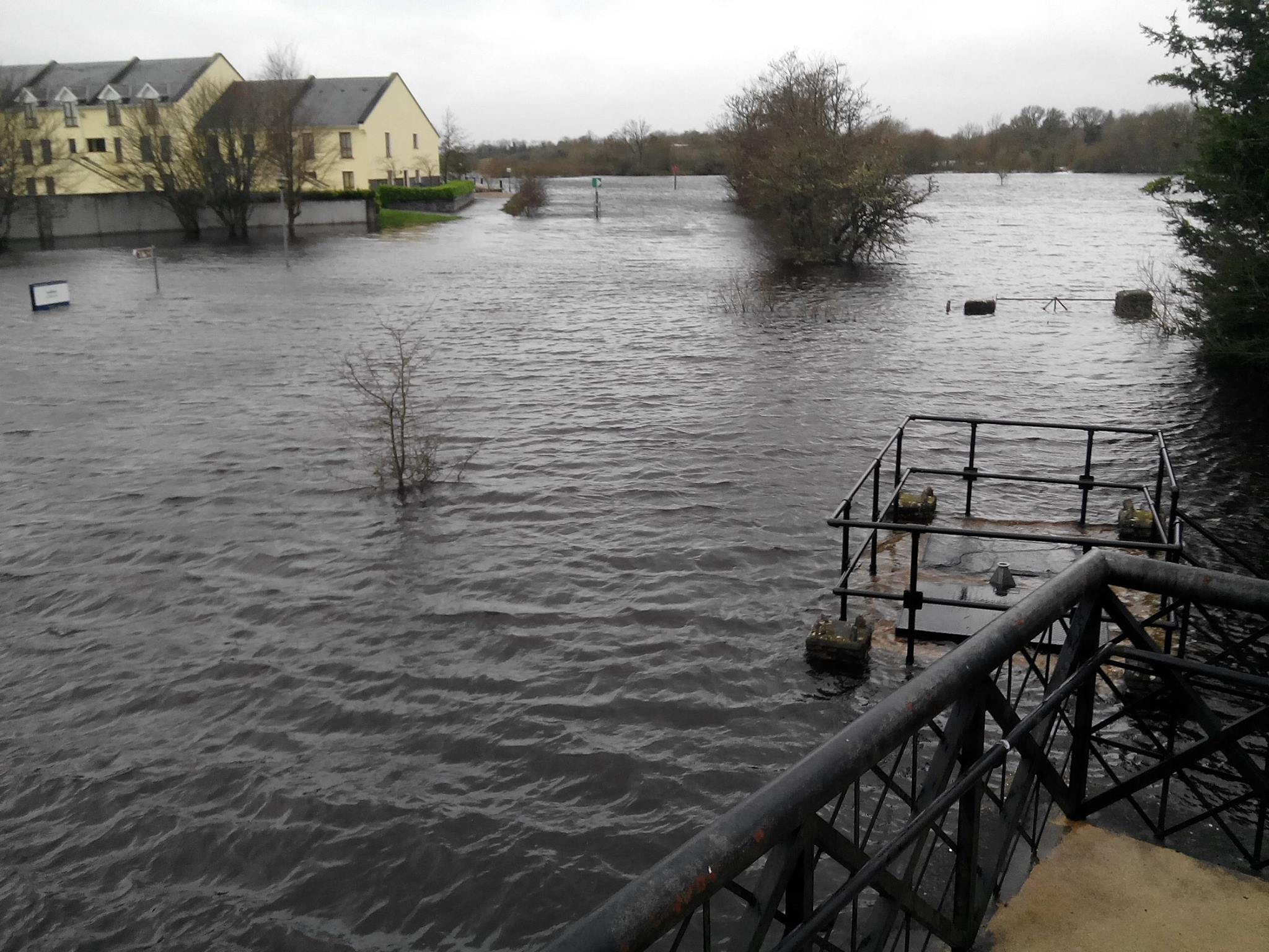 Flooded Shannon 2015