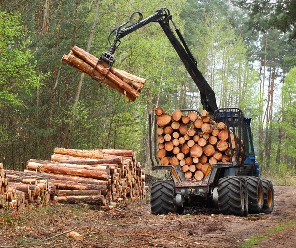 The problem with Biomass – it can emit more carbon per unit of energy than most fossil fuels!