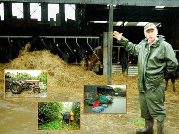 Tommy Earley's Social Farm open day in Drumshanbo