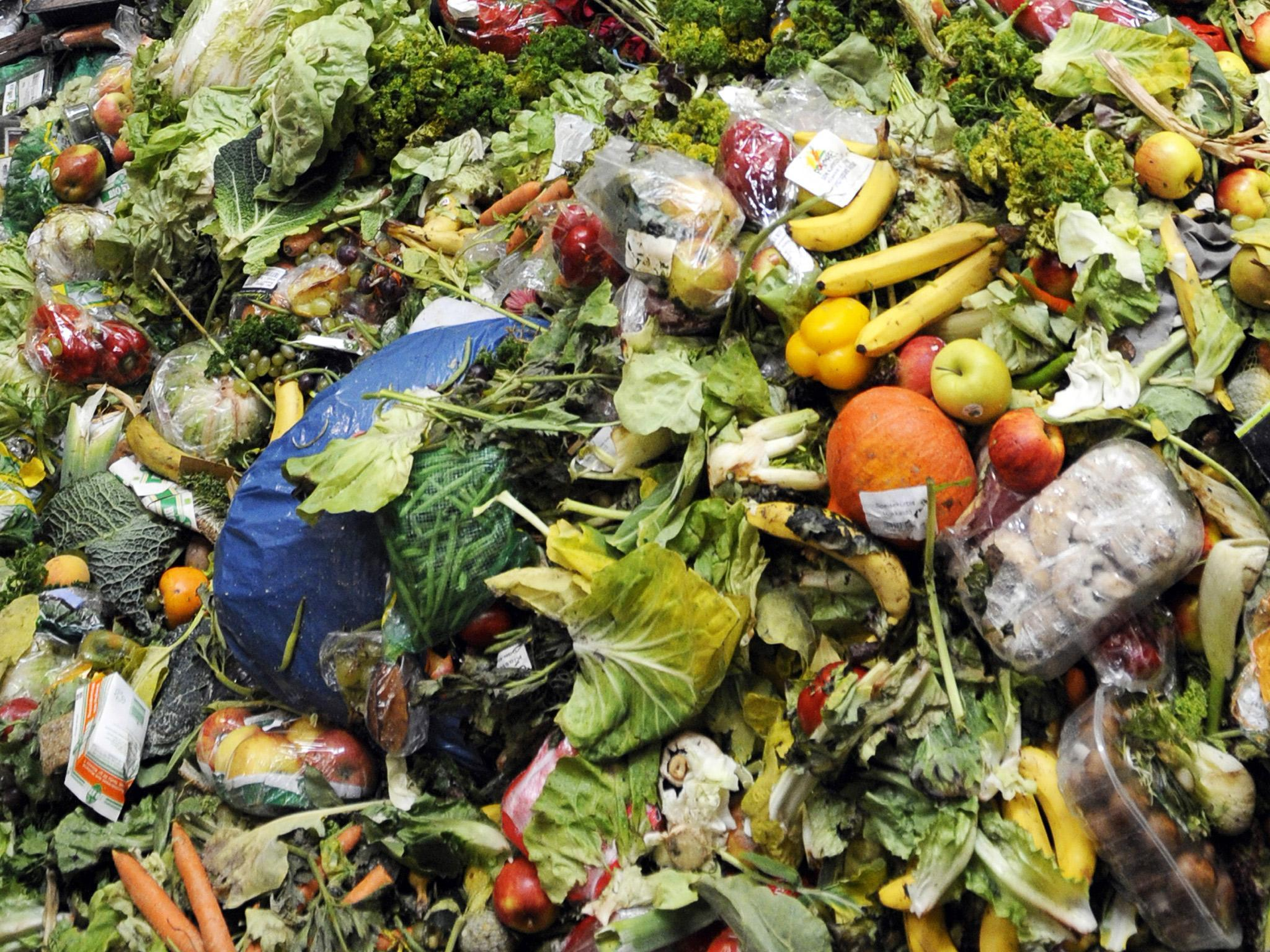 Want to fight climate change? Stop wasting food!