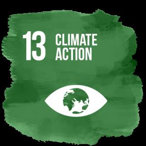 SDG13 climate action logo