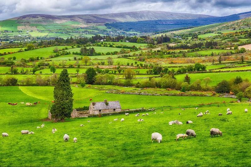 irish farming landscape
