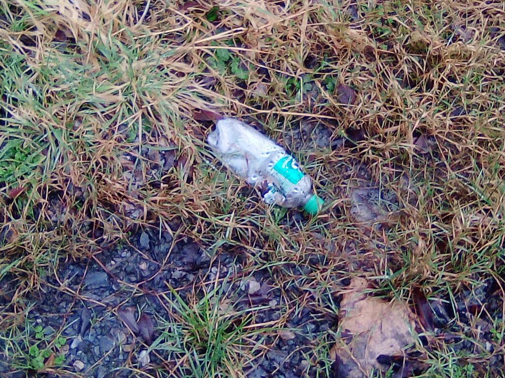 plastic bottle in nature