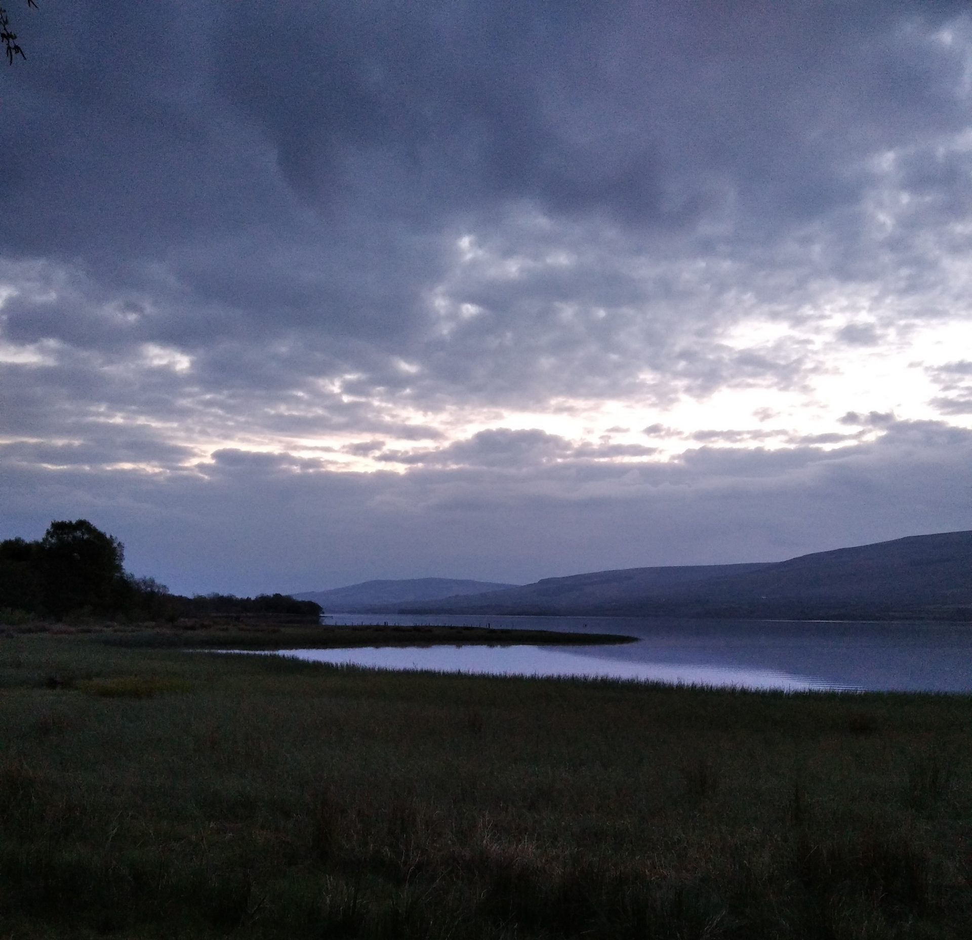 Guided Dawn Chorus: it all started with a birdsong