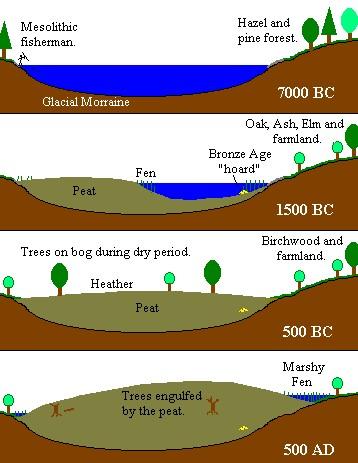 raised bog formation